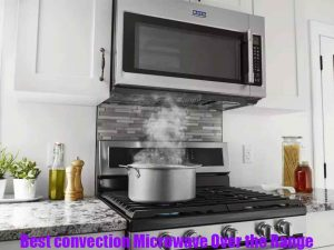 Best-convection-microwave-over-the-range-2020